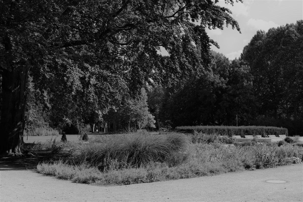 Treptower Park 1
